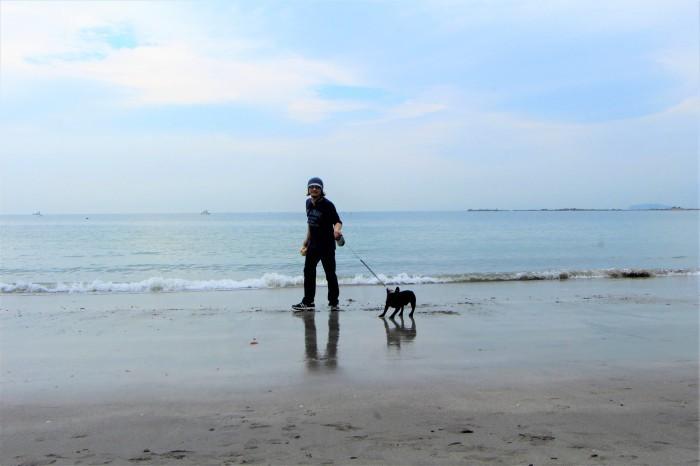 初秋 海原を見に秋谷海岸へ_d0150720_19034142.jpg
