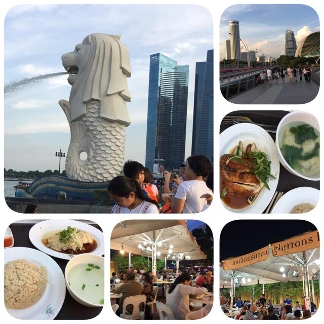シンガポール旅行メモ  4日目(最終日)_c0229423_23343433.jpg