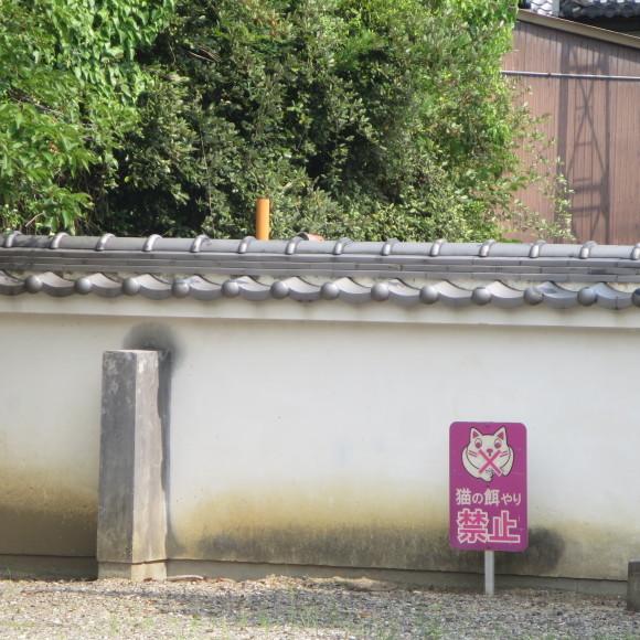 當麻寺と当麻寺とどちらを表記しようかと考えた上変換で先に出てきた方にした 葛城市_c0001670_20522644.jpg