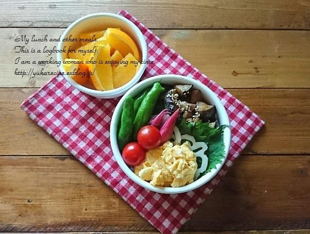9.24 ナスと豚肉のっけ盛り弁当と『今日の美活』_e0274872_07183526.jpg