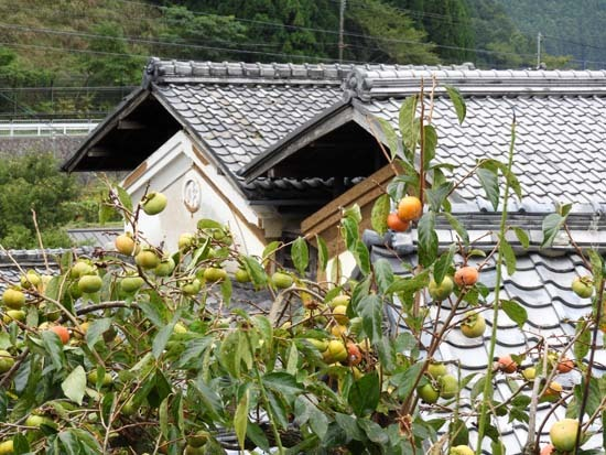 静原の里 秋景色_e0048413_09021604.jpg
