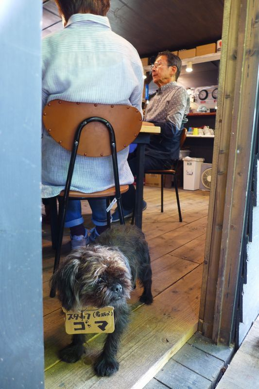 「cosi-cosi」さん 「oluoluカフェ」さん (滋賀県大津市、三重県伊賀市)_d0108737_14010574.jpg