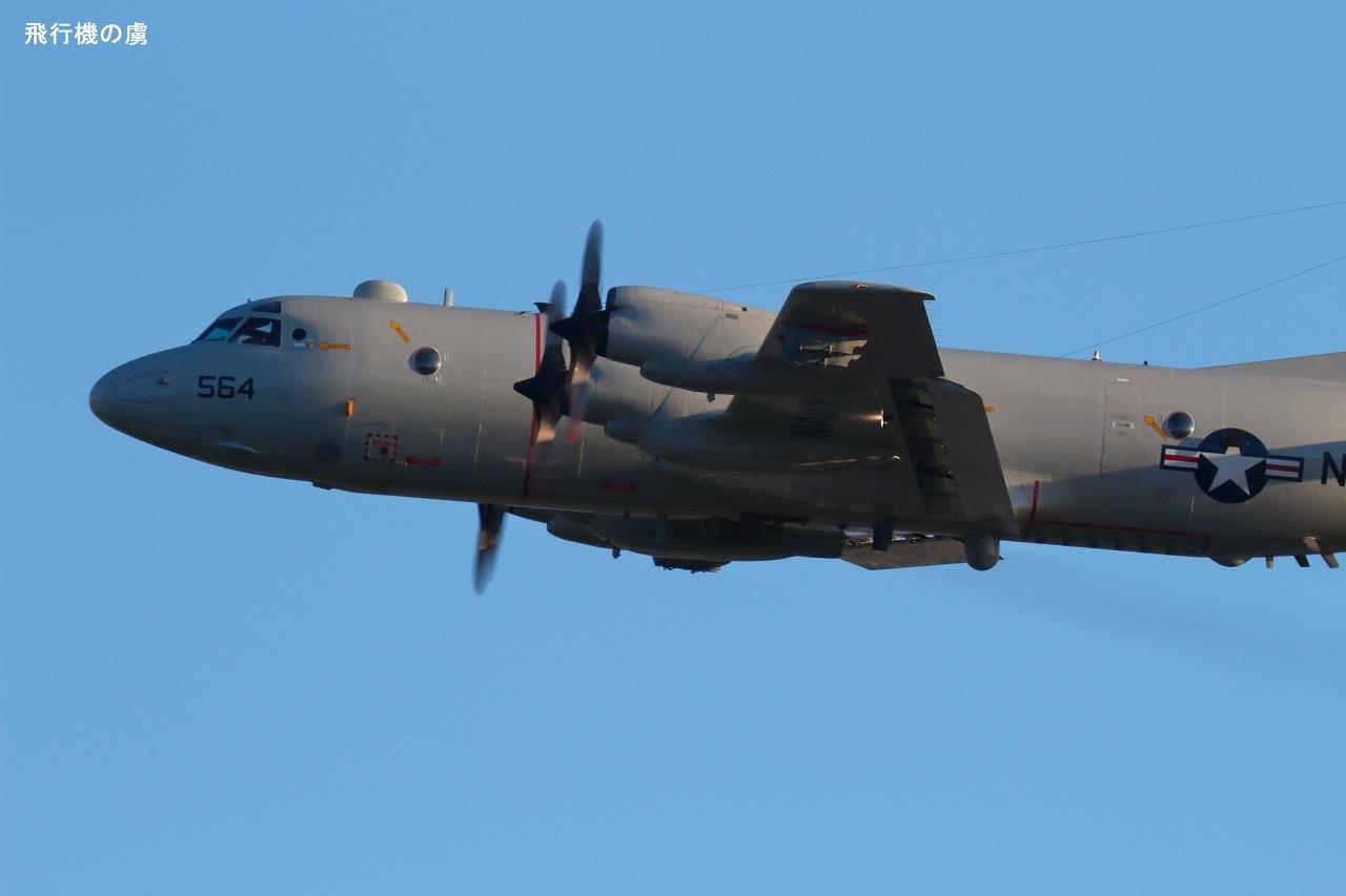 800mm で追う  P-3C  アメリカ海軍_b0313338_21100635.jpg