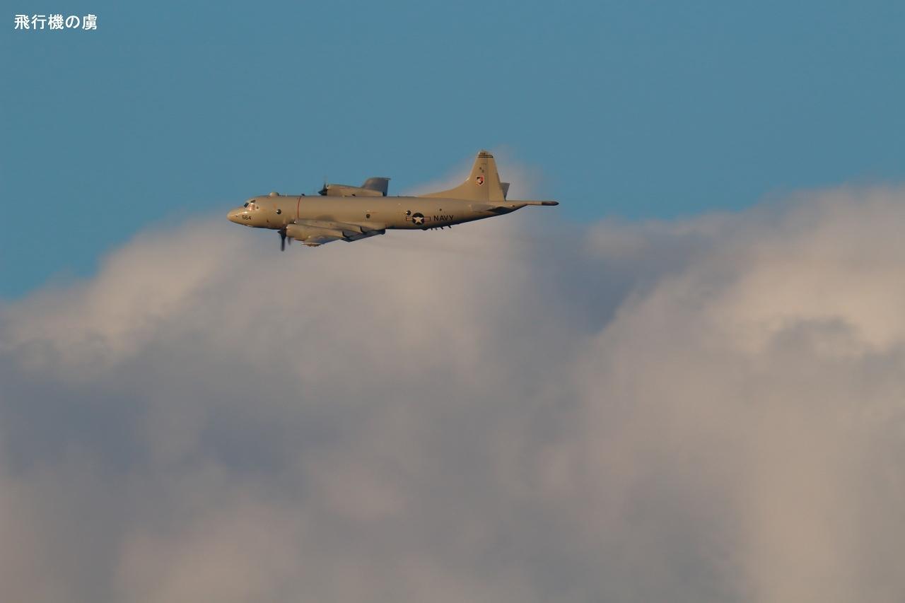 800mm で追う  P-3C  アメリカ海軍_b0313338_21110890.jpg