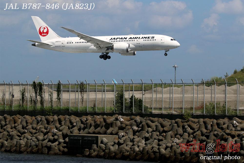 '17年 京浜島・つばさ公園レポート ・・・JAL/JA823J_f0352866_18584470.jpg