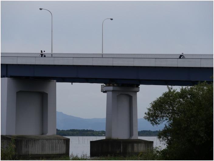 < 琵琶湖大橋 >_c0036080_12243604.jpg
