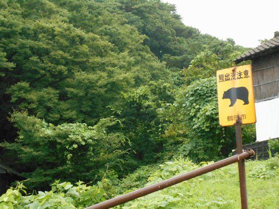 真夏の北日本海鉄道 8 (羽越本線 小波渡駅・村上駅/ほか)_b0005281_20405241.jpg