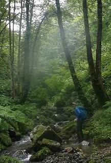 旧徳山村コビクラ谷から蕎麦粒山_e0064783_16104677.jpg
