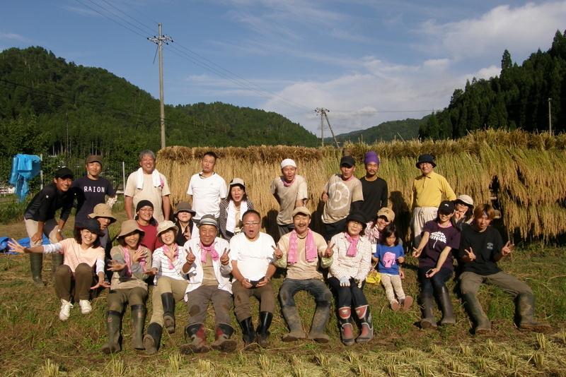 稲刈り~~~!_c0057390_19055768.jpg