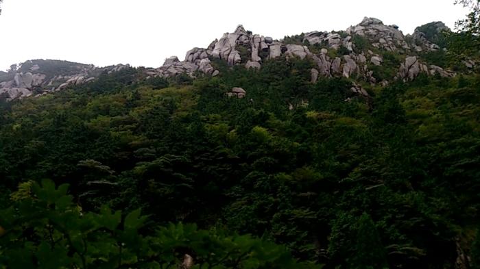 御在所岳登山 裏道コース_a0049296_18281483.jpg
