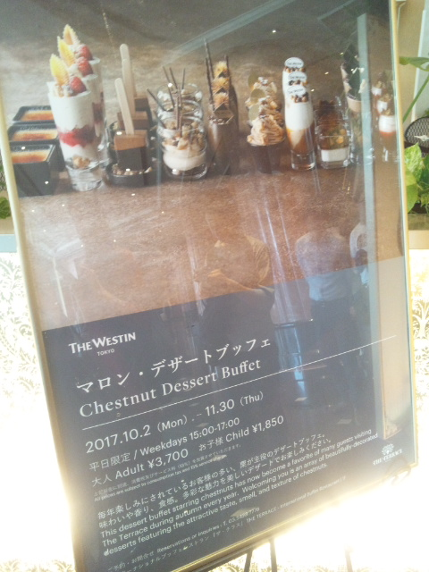 ウェスティンホテル東京 ザ・テラス ワールドチョコレート・デザートブッフェ~第2章~_f0076001_052075.jpg