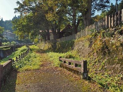 初秋の境内を散歩_c0336902_18102538.jpg