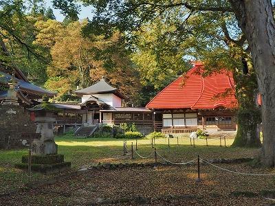 初秋の境内を散歩_c0336902_18103405.jpg