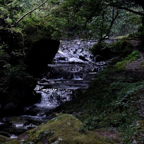 秋が来た...04_f0099102_17390851.jpg