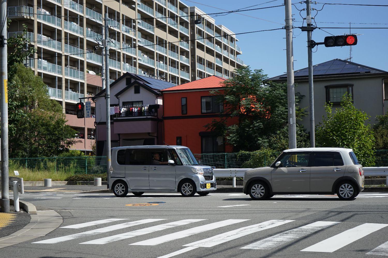 ミミちゃんと服部緑地_b0069128_916238.jpg