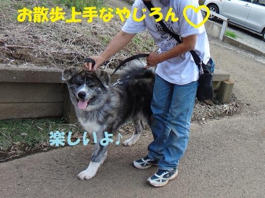 f0121712_07263839.jpg
