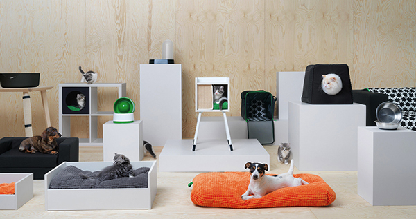 フジコ枕 & IKEAでペット用品シリーズが販売(10月上旬)_b0162726_11551543.jpg