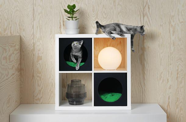 フジコ枕 & IKEAでペット用品シリーズが販売(10月上旬)_b0162726_11553310.jpg