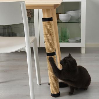 フジコ枕 & IKEAでペット用品シリーズが販売(10月上旬)_b0162726_11571711.jpg