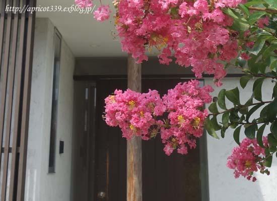 玄関ドアのメンテナンス_c0293787_14293059.jpg