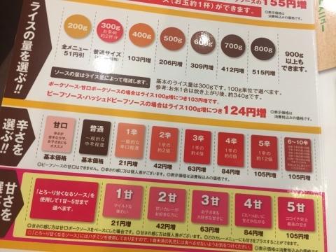 カレー放浪記 12_e0115904_12593962.jpg