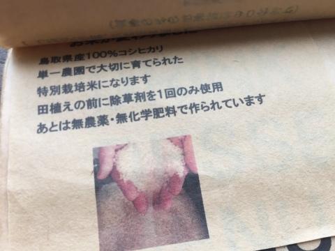 カレー放浪記 12_e0115904_13491717.jpg