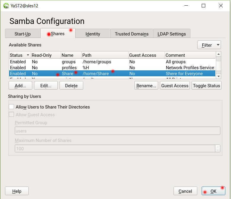 SUSE Linux (SLES12)で YaST を使った samba の導入_a0056607_14180728.jpg