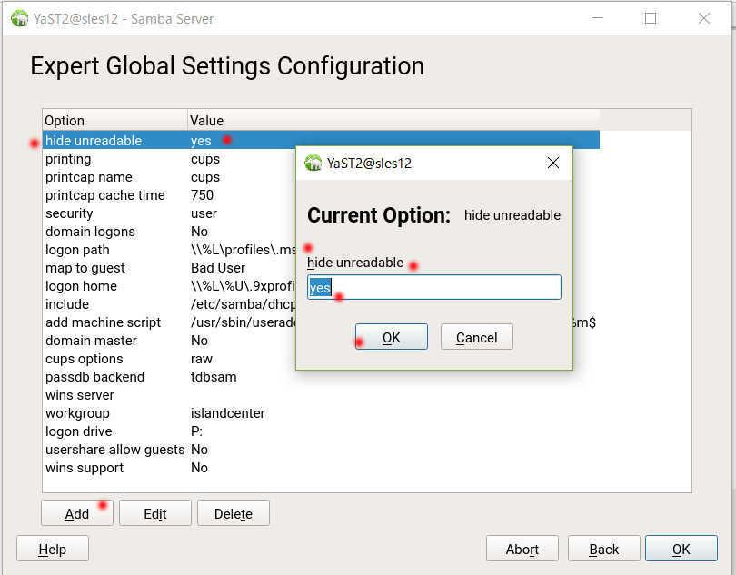 SUSE Linux (SLES12)で YaST を使った samba の導入_a0056607_14214467.jpg