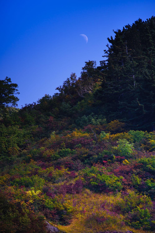 月も紅葉を見に_c0220824_11095421.jpg