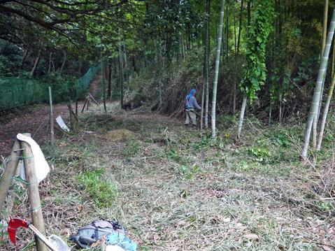 9・20伏尾インストラクターと神奈川県所有の竹林整備②_c0014967_17321563.jpg