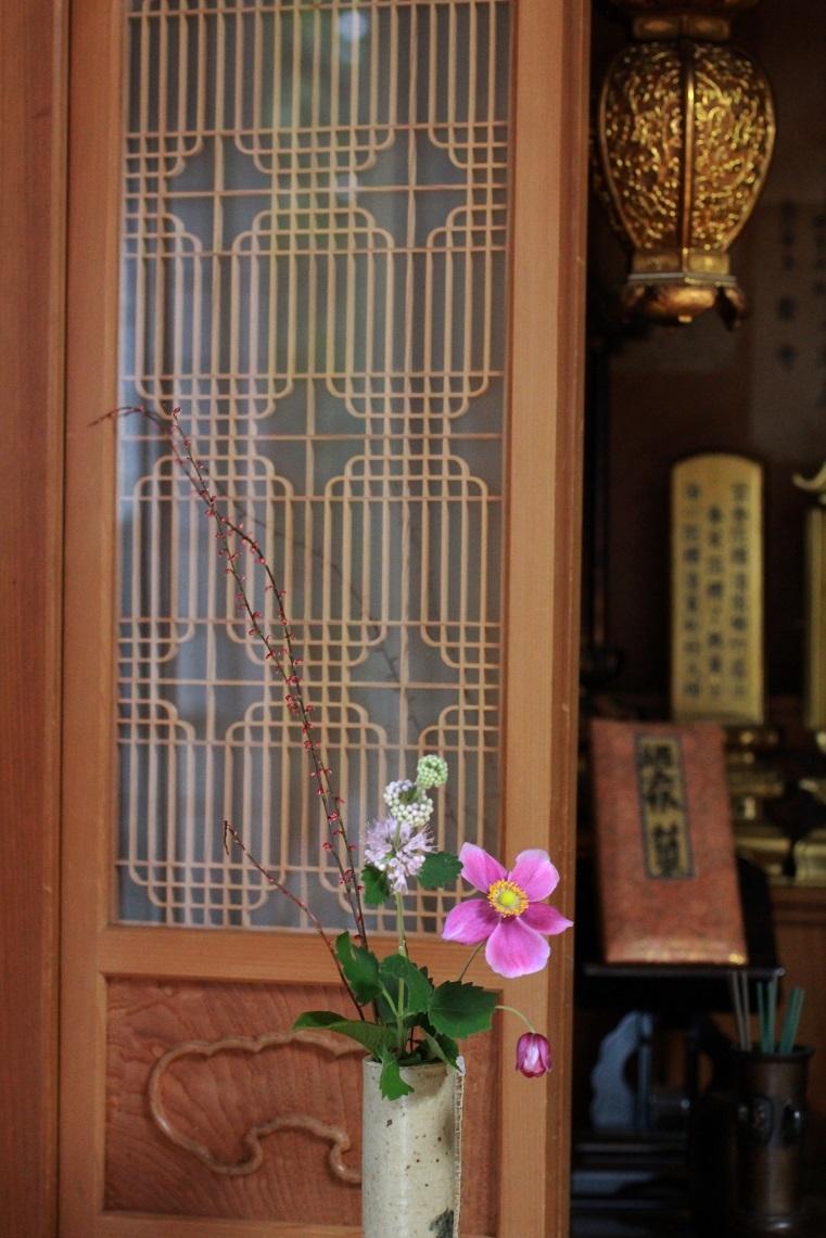 明日は京都へ _a0107574_19341808.jpg