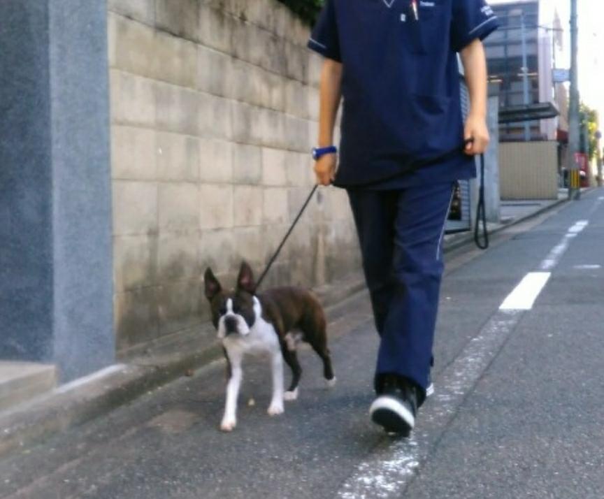 トレーニングブログ_f0357682_20104219.jpg