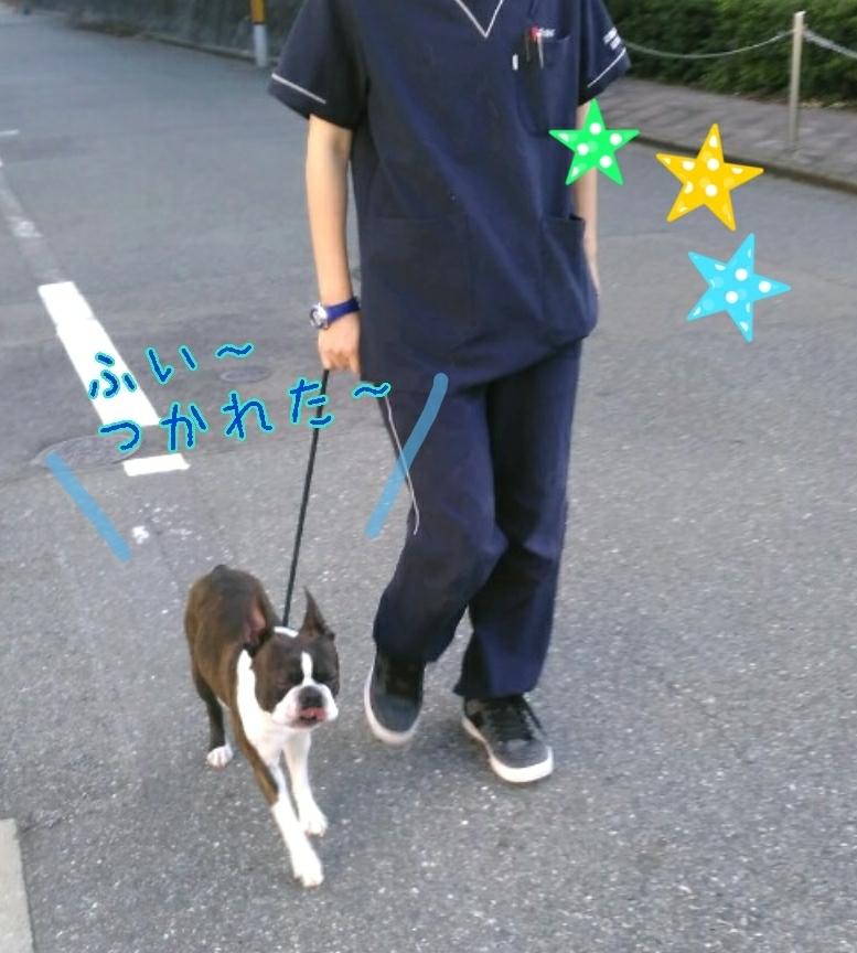 トレーニングブログ_f0357682_20104976.jpg