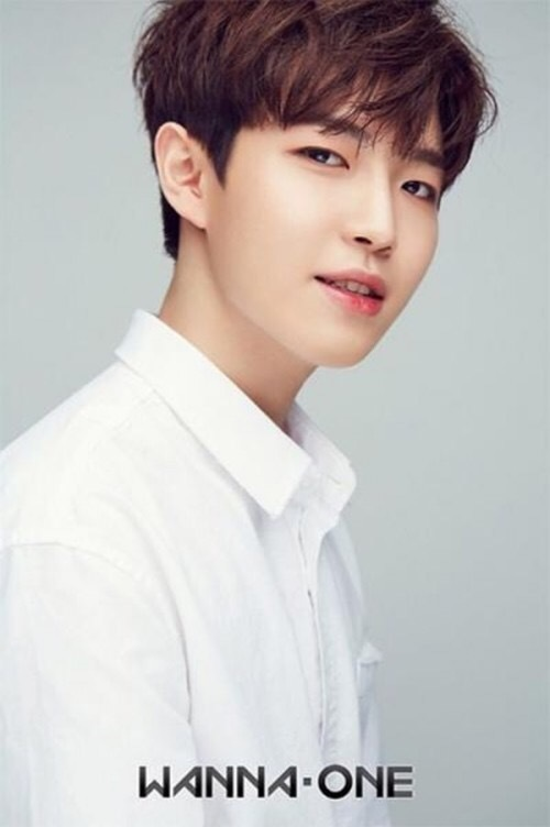 Wanna One勉強中② キム・ジェファン_f0378683_00131197.jpg