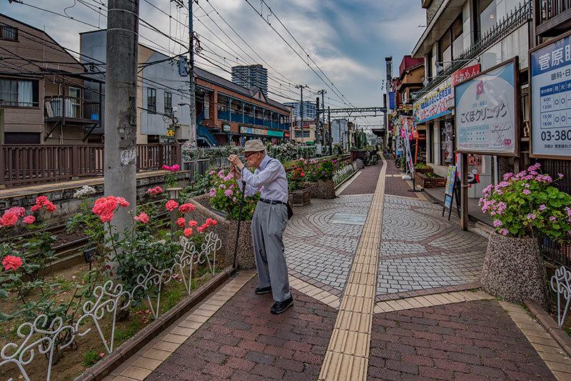 記憶の残像 2017年 花の東京 -45 東京都荒川区 三ノ輪橋辺り _f0215695_21451039.jpg