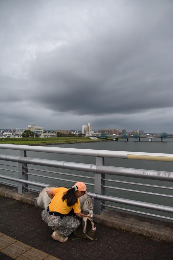 迫る雨雲にあせったぜ (^_^;) _c0049299_17563613.jpg