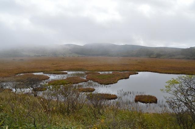 2016年10月10日 八島湿原_c0124100_16514080.jpg