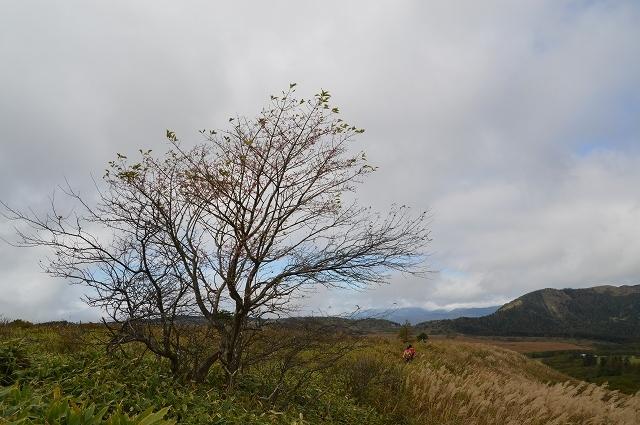 2016年10月10日 八島湿原_c0124100_16521716.jpg