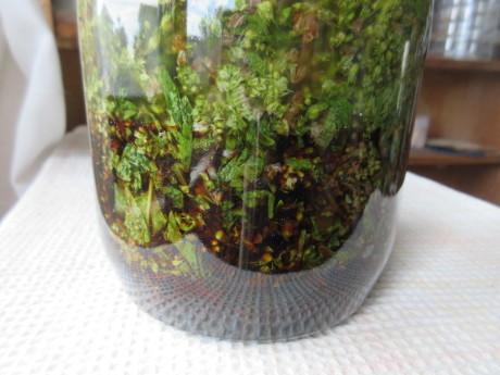 紫蘇の実を醤油漬けに・セイタカアワダチソウのお茶・ほか_a0203003_21123633.jpg