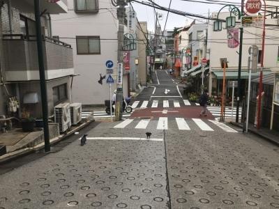東京特許_d0163620_06234032.jpg