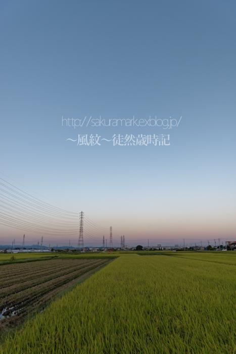 秋空ブルーモーメント。_f0235723_20531410.jpg