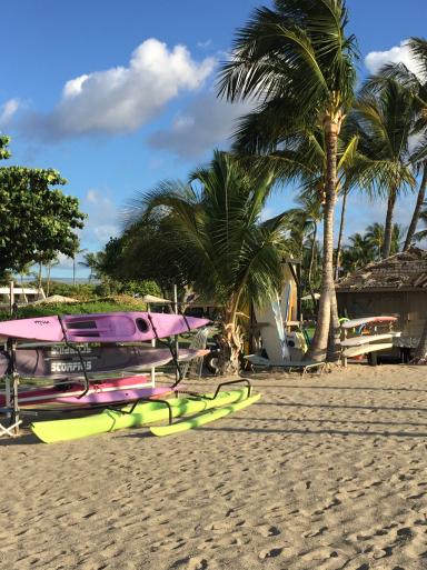 ハワイ島2日目_c0223630_17525762.jpg