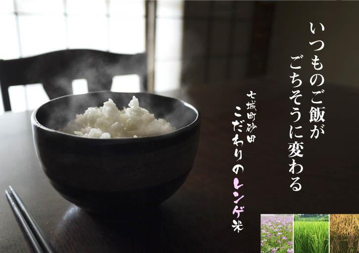 """砂田のこだわりれんげ米 順調に色づき始め頭を垂れてきています!今年は無農薬ではなく""""減農薬栽培""""です!_a0254656_19381021.jpg"""