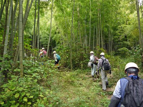 「孟宗1本、真竹は2本」県民参加の森林づくり事業で違い明確_c0014967_17372964.jpg
