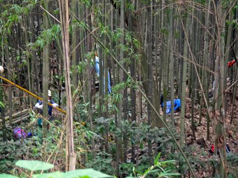 「孟宗1本、真竹は2本」県民参加の森林づくり事業で違い明確_c0014967_17375336.jpg