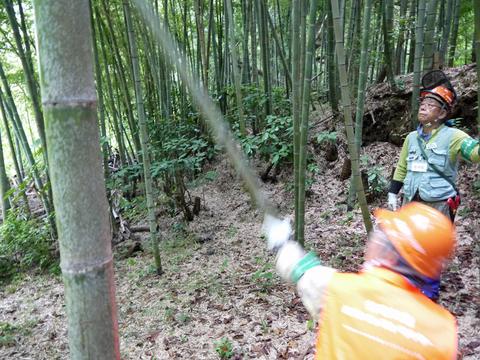「孟宗1本、真竹は2本」県民参加の森林づくり事業で違い明確_c0014967_17401589.jpg