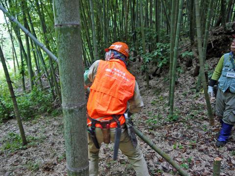 「孟宗1本、真竹は2本」県民参加の森林づくり事業で違い明確_c0014967_17402556.jpg
