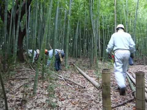 「孟宗1本、真竹は2本」県民参加の森林づくり事業で違い明確_c0014967_17412362.jpg