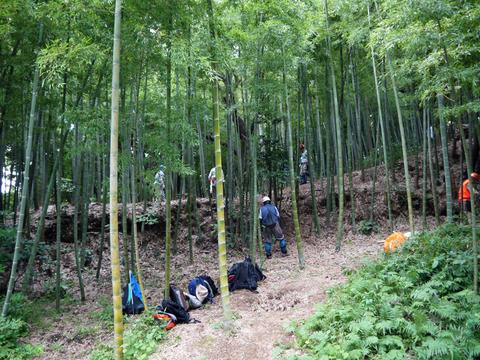 「孟宗1本、真竹は2本」県民参加の森林づくり事業で違い明確_c0014967_17414615.jpg