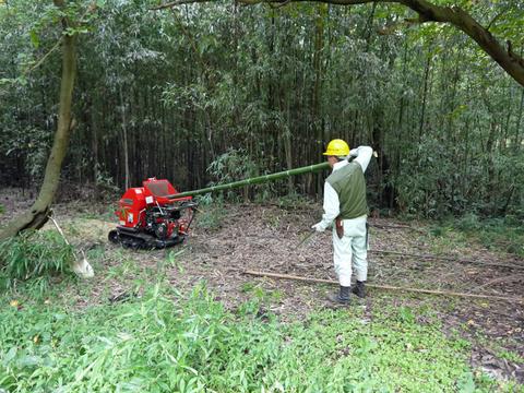 「孟宗1本、真竹は2本」県民参加の森林づくり事業で違い明確_c0014967_17415810.jpg